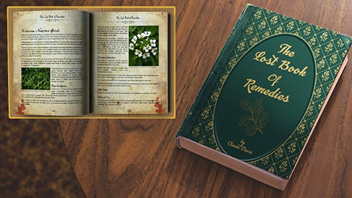 the lost book of remedies hardcover